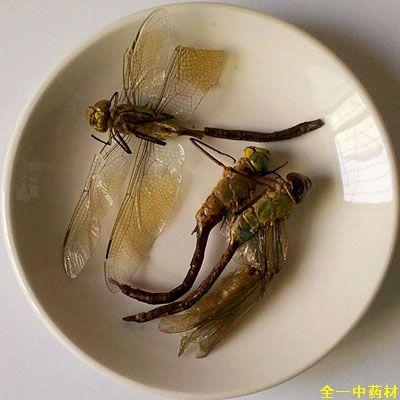 绿蜻蜓 统